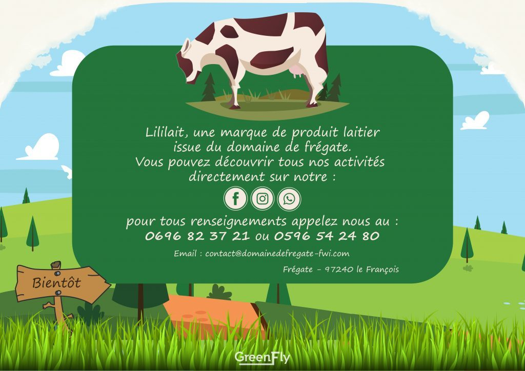 affiche-publicitaire-lililait-martinique-caly-design-greenfly