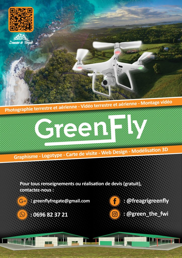 affiche-publicitaire-magasine-madinmag-martinique-caly-design-greenfly-greenfwi